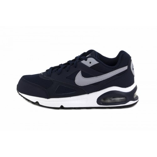 Deportiva azul y gris Nike Airmax